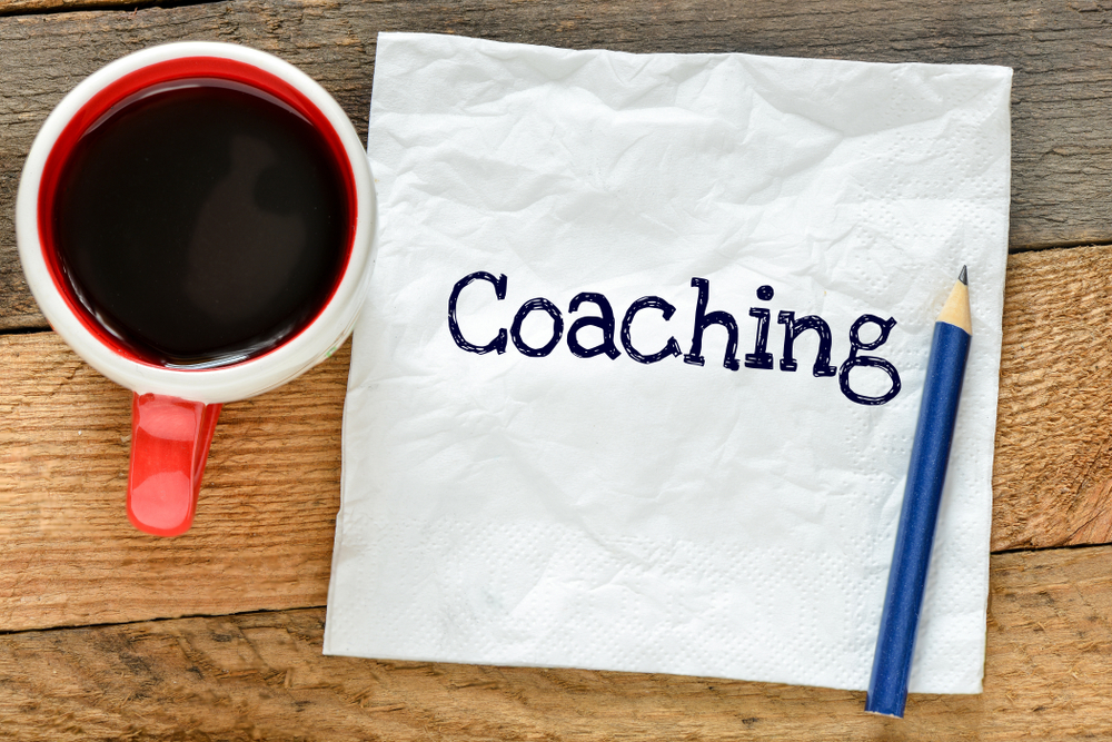 Safety Leadership Coaching - David Cant